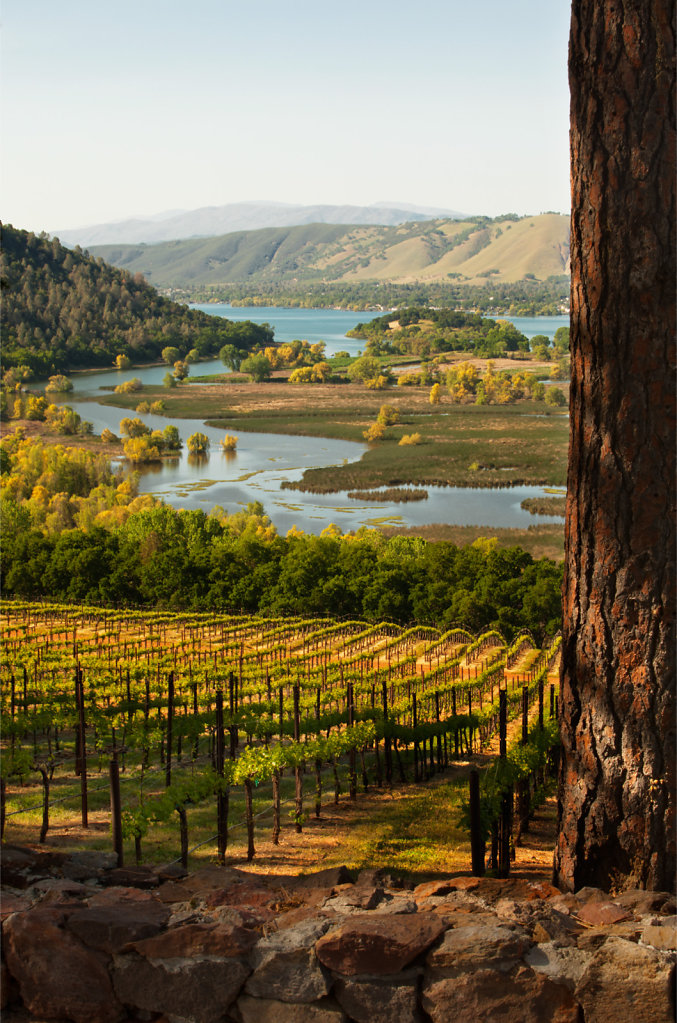 Majestic view of lake county vineyards with river below