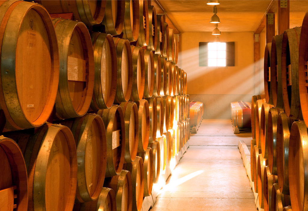 Wine barrels in cellar under golden light
