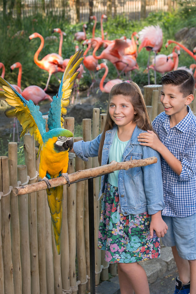 Boy and girl with a big parrot